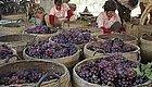 【求扩散】帮帮柳州果农: 葡萄15元/8斤你要不要?