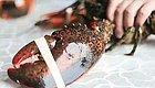 波士顿龙虾的6种中西式吃法,好吃到爆!