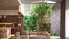 【绿植】绿植走进室内,让你的客厅绿意满满!【036期】