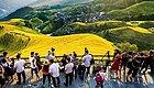 旅游扶贫10   Airbnb爱彼迎的桂林乡村振兴记