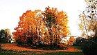 国庆中秋去哪里?在这里,有着你对秋天的所以幻想!