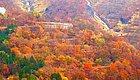 秋季来日本这些地方看红叶,绝对不亏!
