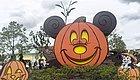 要欢乐不要惊悚!全家老小都适用的万圣节正确打开方式就在迪士尼小镇!