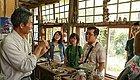 这对台湾夫妻在闹市建梦幻园林,房间盖在树根上,收藏种子500+,吸引了无数人