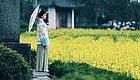 再过30天,安徽的春天美翻了!