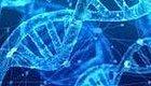 DNA也有网络安全风险!黑客可窃听DNA合成仪窃取基因蓝图