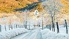 立冬了,注意防五寒!
