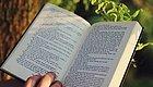 去英国读语言类专业,有哪些优势院校值得选择?