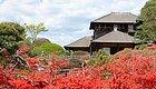 没去过这些日本庭院,你都不知道日本的秋天有多美