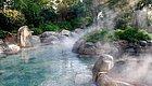 休闲年卡新增山湖温泉!81大景点全年刷卡100次,只剩最后一周