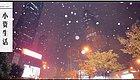 南京跌破0℃,下雪天凹造型就靠波司登了!还有元旦活动优惠…