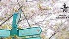 新闻  青岛旅行有优惠!相约红瓦绿树,碧海蓝天~
