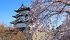 超高性价比的日本小众赏樱圣地,你必须知道