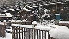 """黑龙江这三个地方迎来今秋第一场雪!哈尔滨周末升温,抓紧出门""""撒欢""""吧!"""