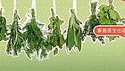 """它是春天养肝第一菜,还是""""洗肠菜""""! 比白菜鲜、比萝卜补,错过再等一年"""