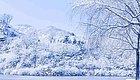 """谁说今年济南""""贫雪""""的!大部分都下在了这儿..."""