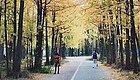 刚刚画上句号的秋天有多美?这些金华人用照片告诉你