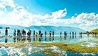 150+精品民宿任选12家免费住!承包你的全年度假,一月一家去山林湖海看遍四季!