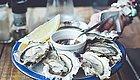 肿瘤患者到底能吃不能吃?鲍鱼、蛤蜊、海藻...等10种海鲜最全解析!(十二)