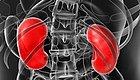 这10个致命坏习惯会把肾脏搞衰...第5个是许多人心中的痛!