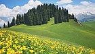 端午节  寻找新疆最美的春天——喀拉峻60公里徒步